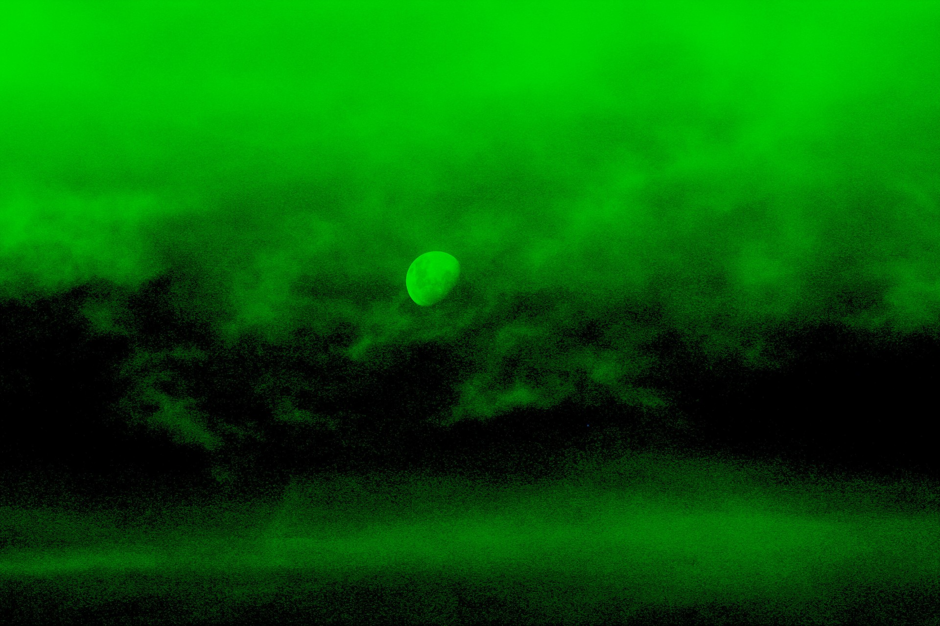 Night Vision Can Now Become an Everyday Thing! How Exciting!